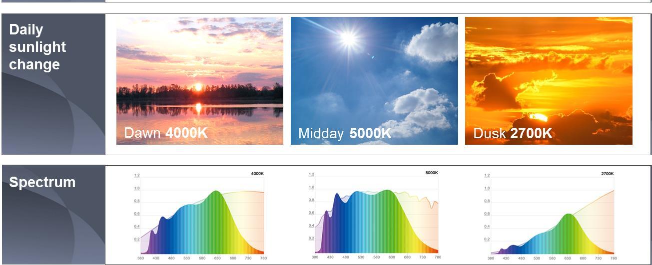 Chip SunLike hỗ trợ nhịp sinh học của con người