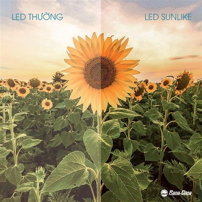 LED SunLike có chỉ số hoàn màu cao cho cảm nhận màu sắc chân thực