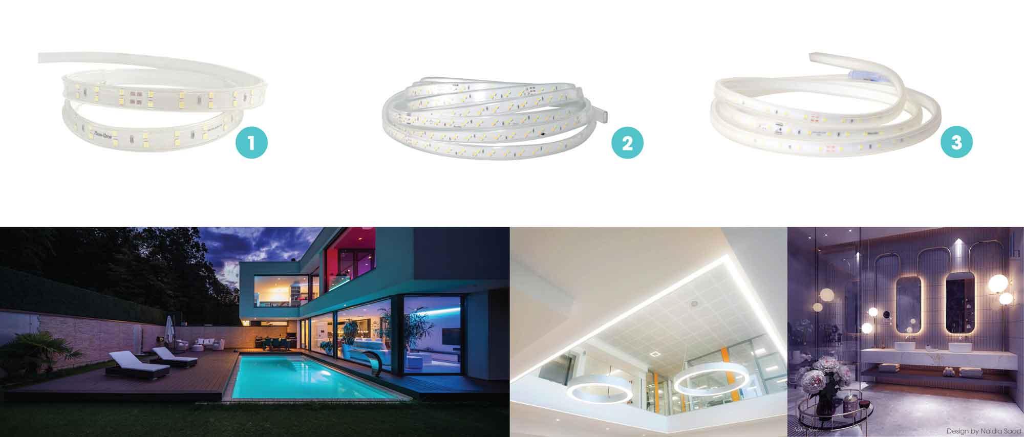 3 loại đèn LED dây Rạng Đông